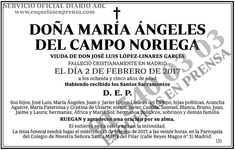 María Ángeles del Campo Noriega